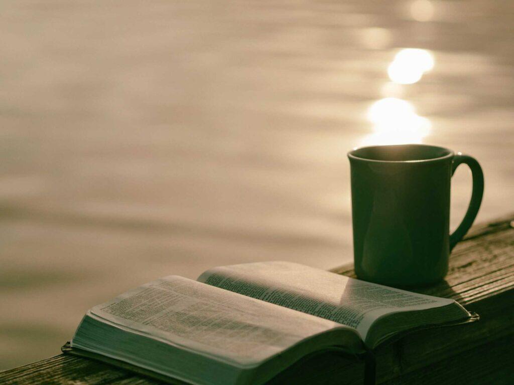 Libro junto a una taza a la orilla de un lago
